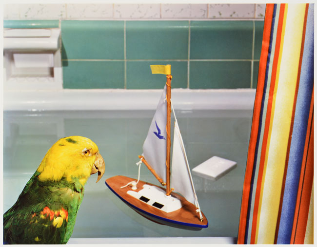 Parrot and Sailboat , 1980 Vintage Dye Transfer Print 20 x 24 inches