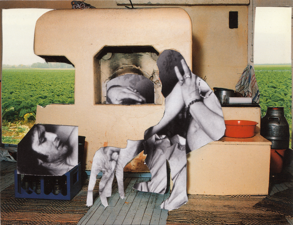 Melinda Gibson   Photomontage I, (taken from pages 100, 143, 187) , 2009-2011 8 ⅜ x 11 ¾ in, unique photographic collage