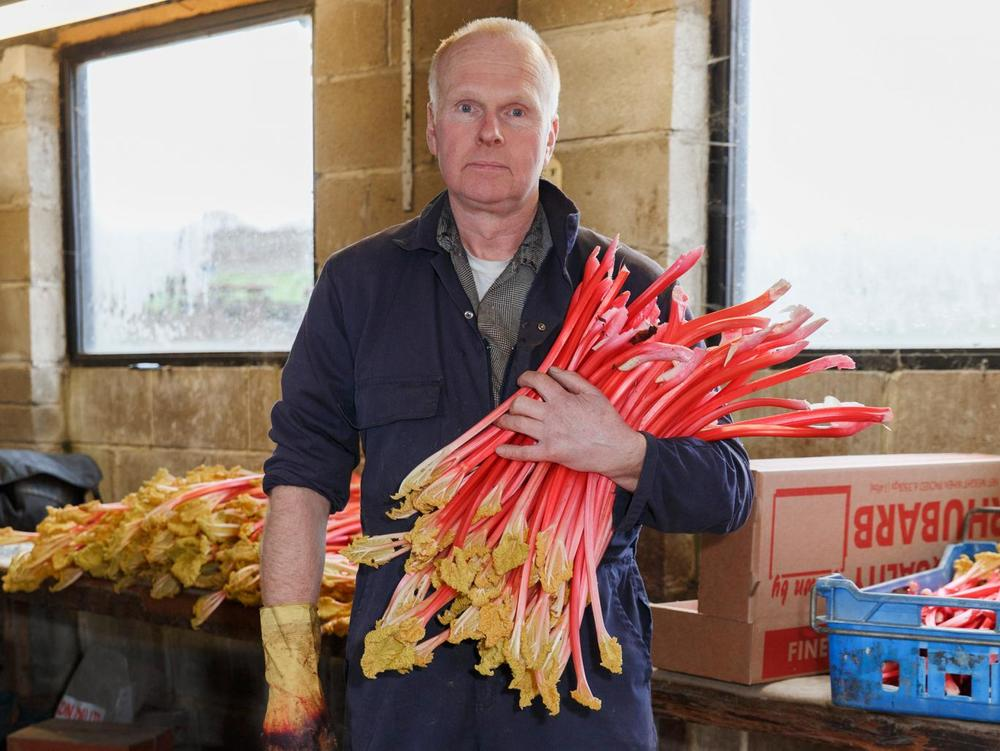 Martin Parr , from the series  The Rhubarb Triangle