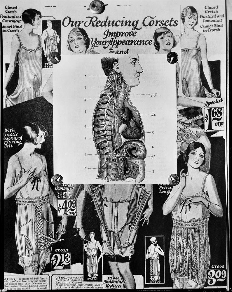 El sistema nervioso del gran simpático , 1929