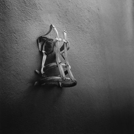 Untitled , El Baño de Frida Kahlo, Coyoacan, Mexico, 2006 Silver Gelatin Print Sheet 24 x 20 inches/Image 18 x 18 inches
