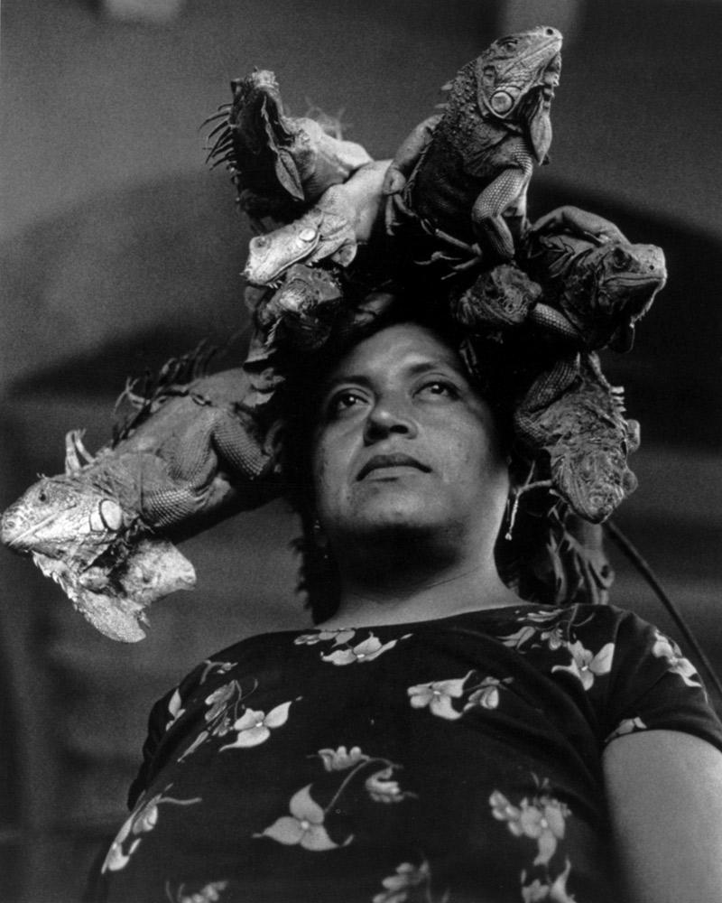 Nuestra Señora de las Iguanas , Juchitàn, 1979 Silver Gelatin Print 20 x 16 inches