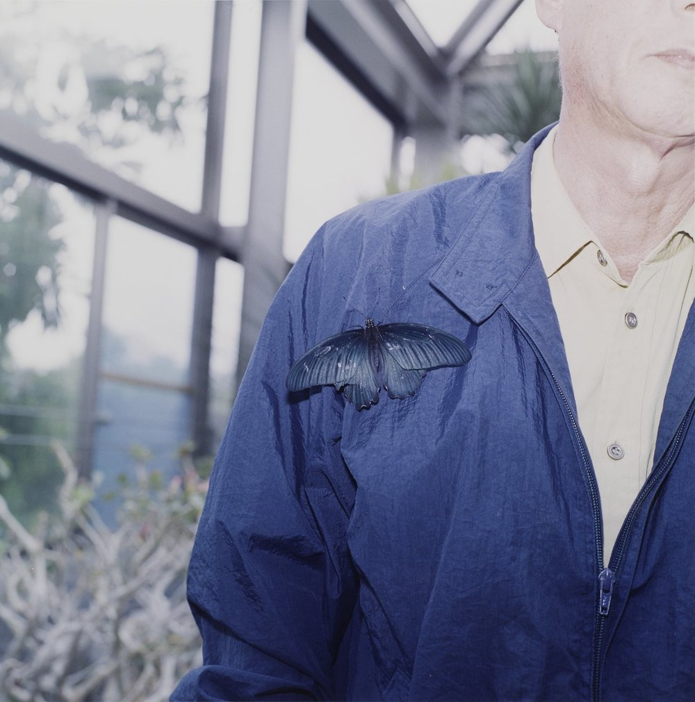 Rinko Kawauchi,  Untitled , from the series  the eyes, the ears , 2005