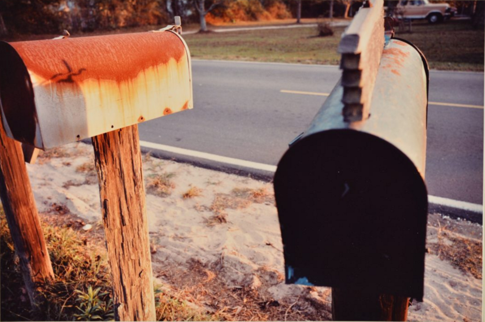 William Eggleston,  Untitled , 1981.  Gift of William Ferris, University of Mississippi Museum and Historic Houses.