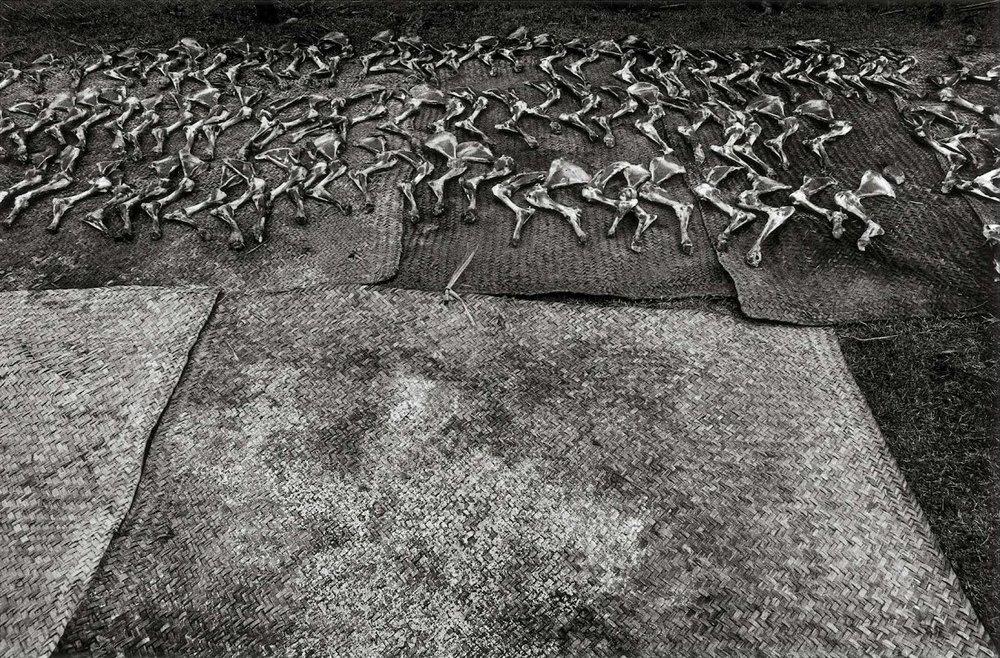 Graciela Iturbide    Después de la matanza , La Mixteca, Oaxaca, 1992  16 x 20 inch Silver Gelatin Print