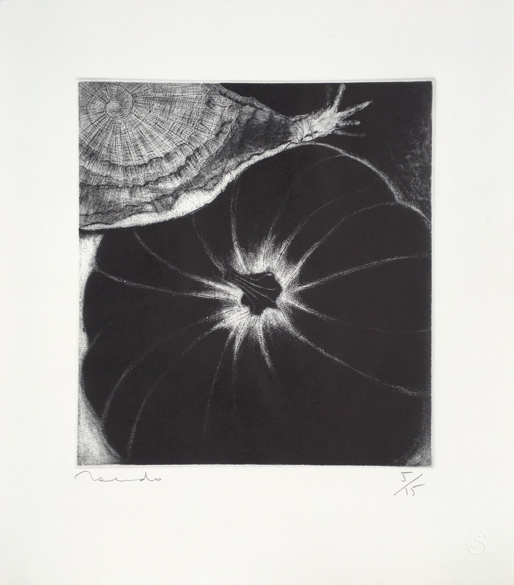 Francisco Toledo  Para Don Manuel Alvarez Bravo, 2018 14.25 x 12.75 inch Drypoint and Aquatint Number five from and edition of fifteen From the collection of Latin American Masters GCP28605 $2,500