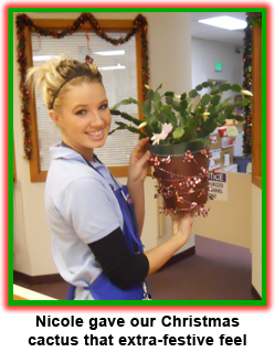 Nicole Hoff decorates the coin shop for holiday shoppers at Southgate Coins