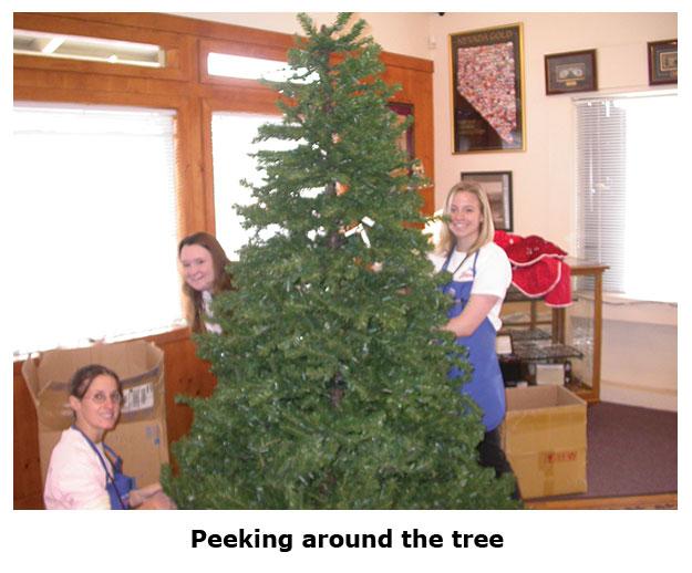 Southgate Coins staff peek around the Christmas tree