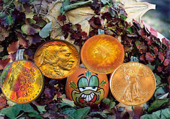 Orange-toned coins for autumn at Southgate Coins