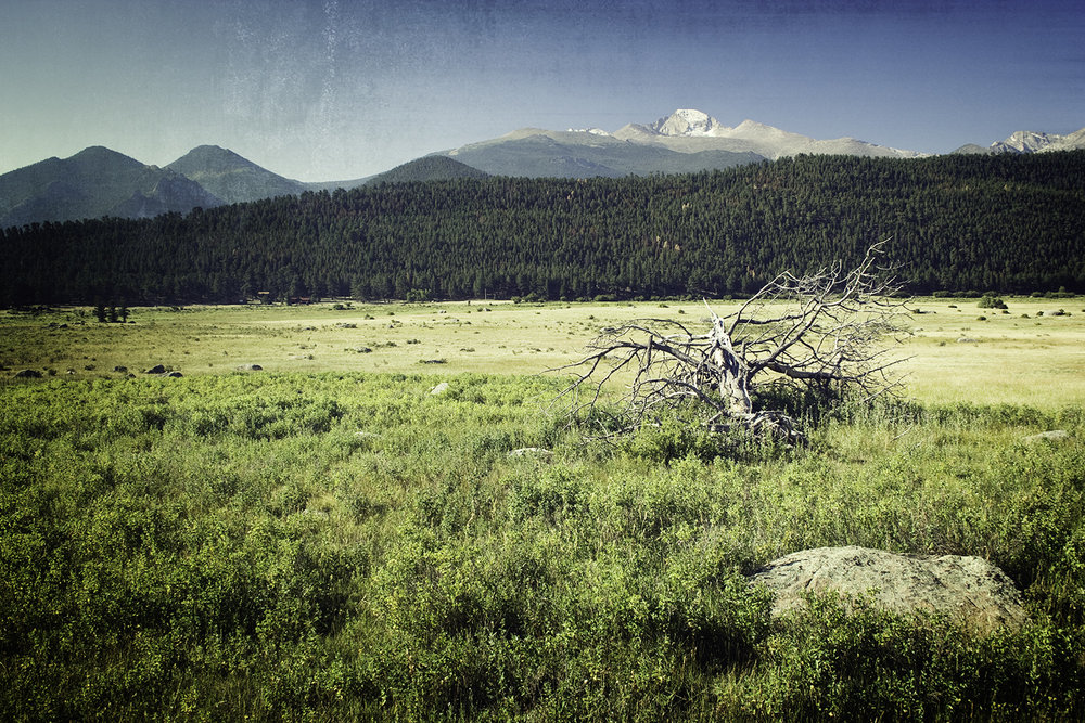 Location and Date: Rocky Mountain National Park, Estes Park, Colorado; 23 August 2008  Tech Specs: 1/80s @ f/5.6.  ISO 100.  21 mm  Camera & Lens: Canon D350.  Canon 18-55mm