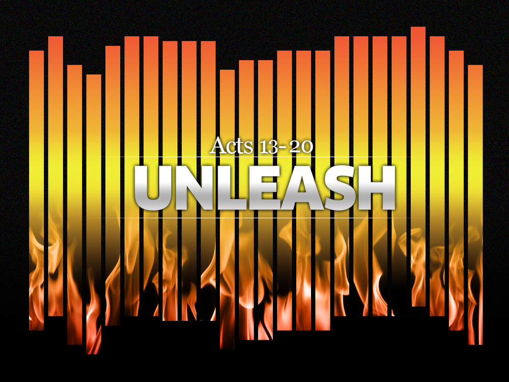 unleash300.jpg
