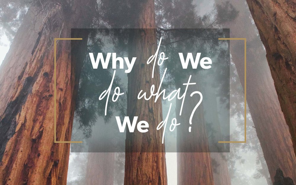 Why do we do logo.jpg