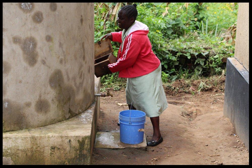 Staff member  taking water