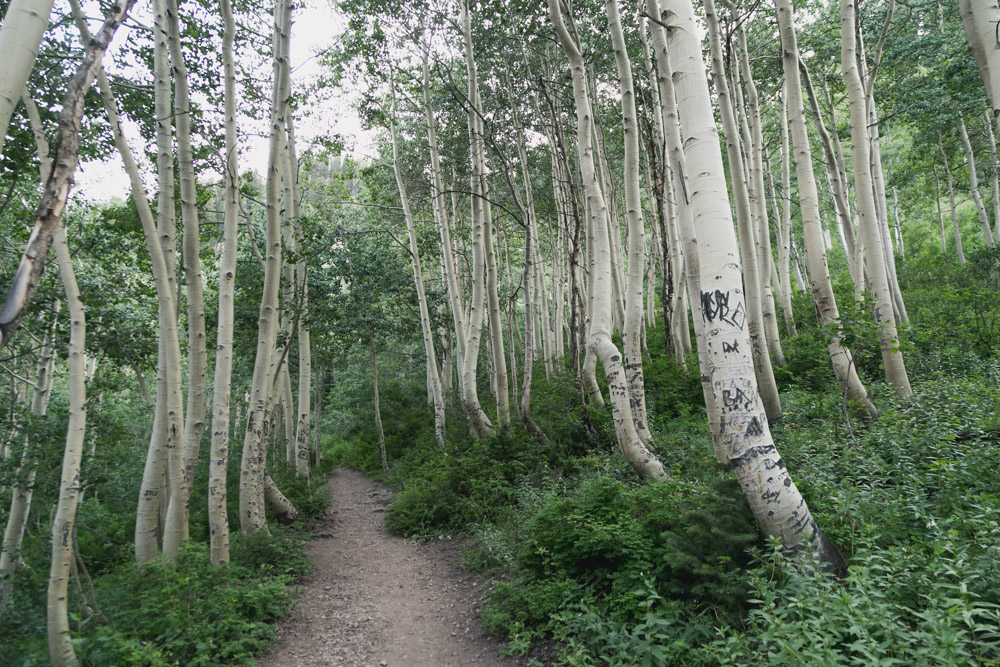 Utah Big cottonwood canyon silver lake photo-4.jpg