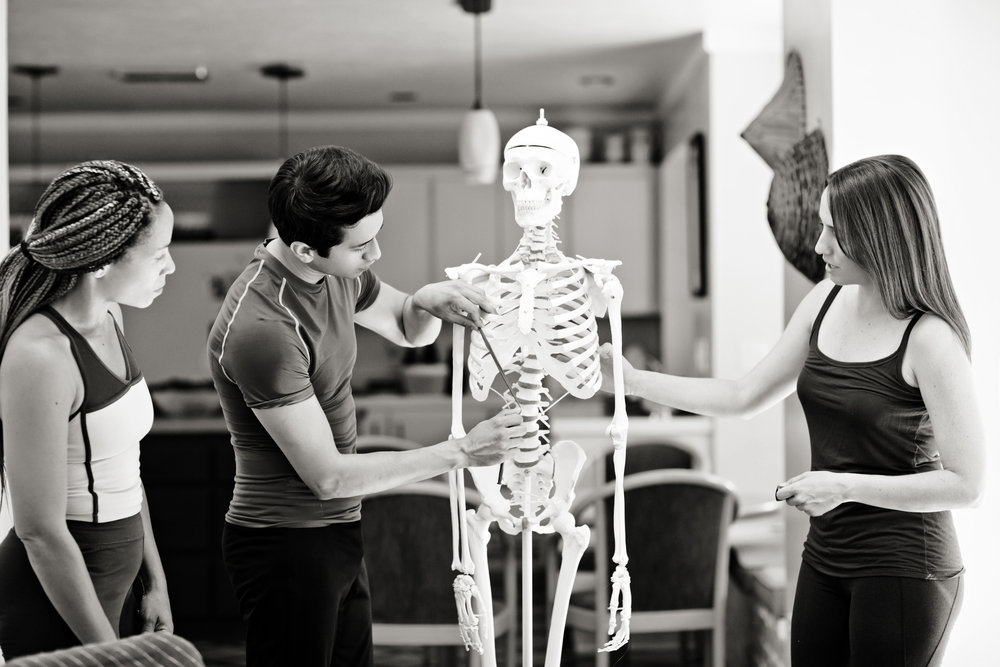 Front Skeleton copy.jpg