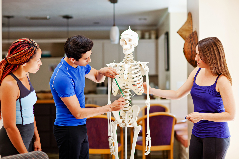 Anatomy Workshop — Beverly Hosford - Fitness Professional