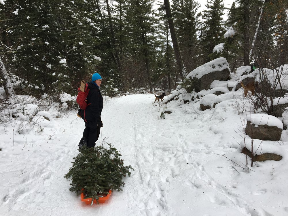 Out in the mountains getting a Christmas Tree