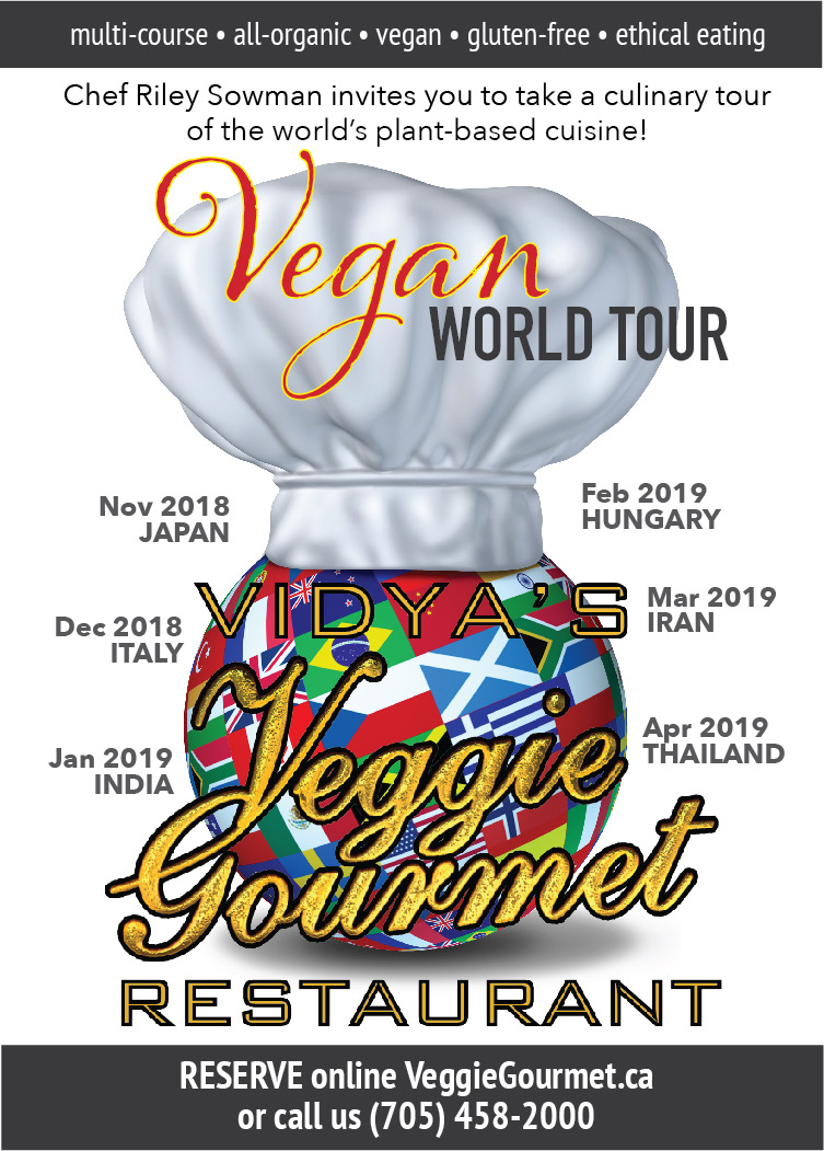 VEGAN WORLD TOUR poster.jpeg