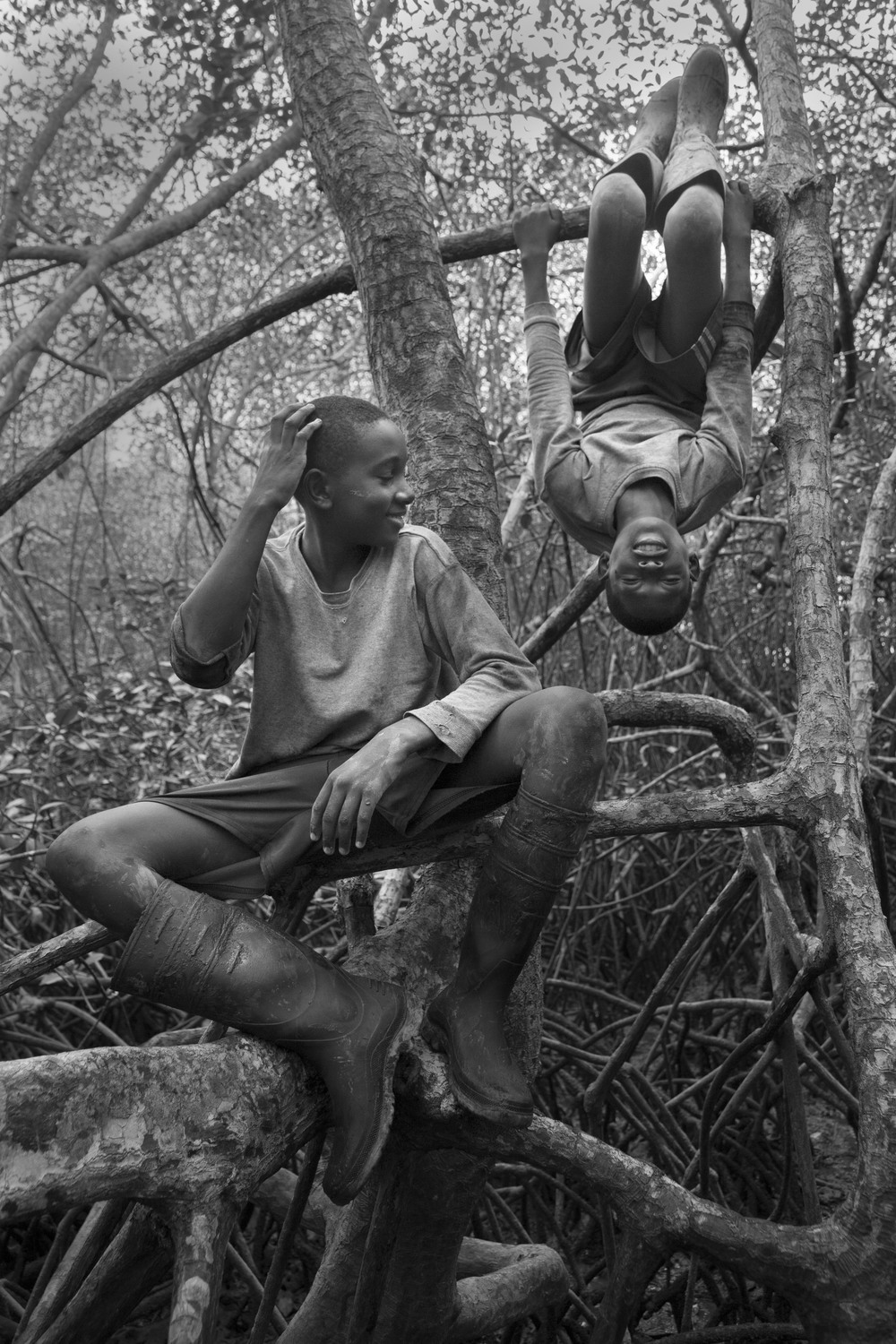 Cesar Castro and Olger Grueso goof around in the mangrove while taking a rest from picking shells. 2013.