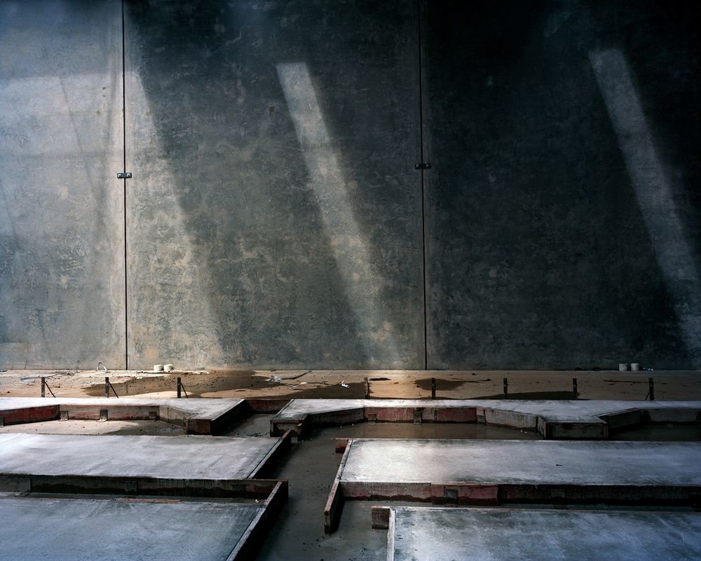 Vertebrae, 2010