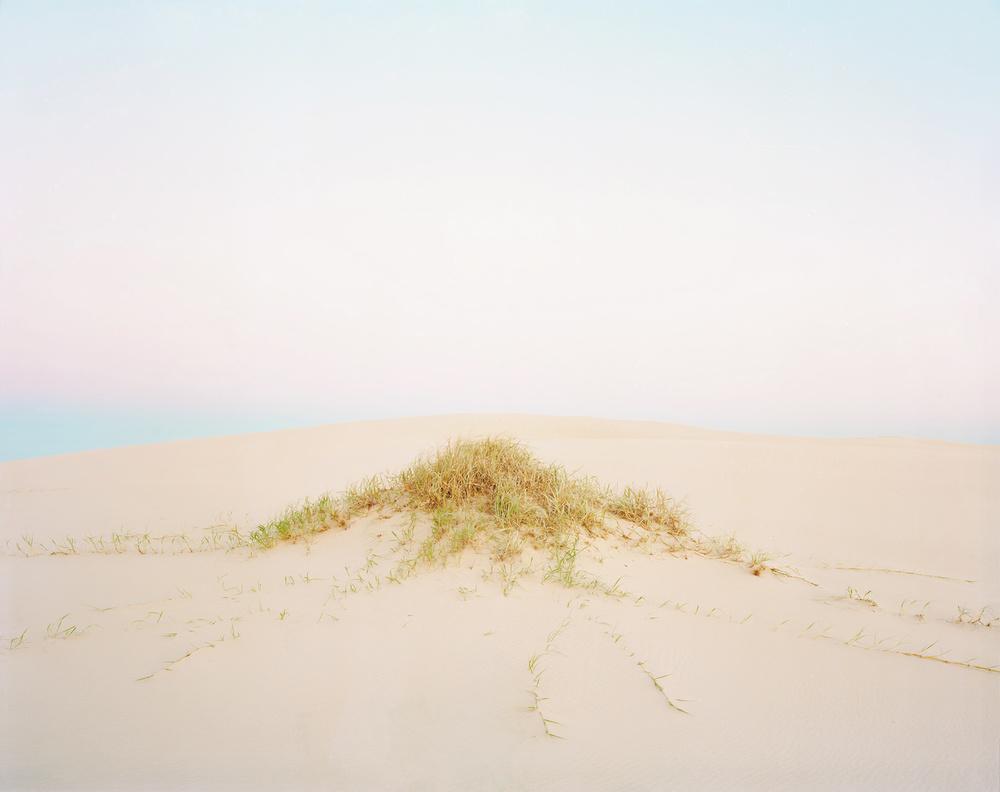 Dune #1, 2010
