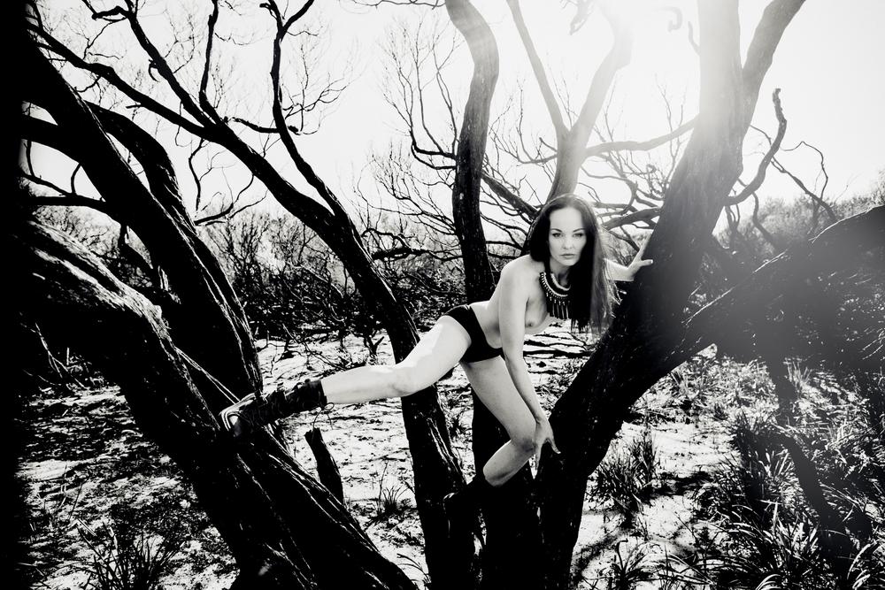Predator - Anne Duffy Assist: GIAN Designs