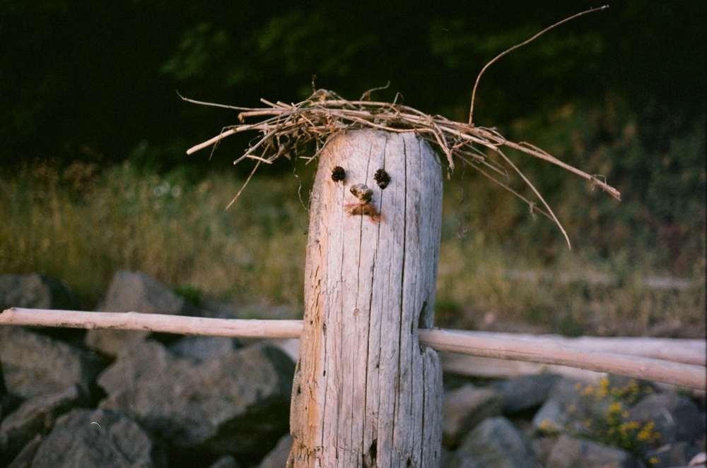 Wooden Man.jpg