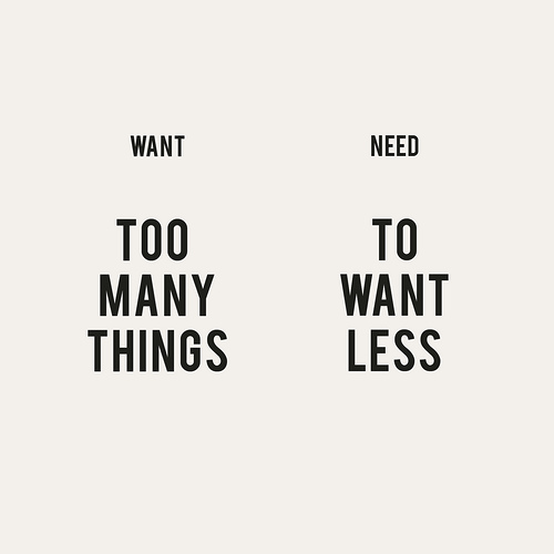 Need To Want Less Recovering Lazyholic
