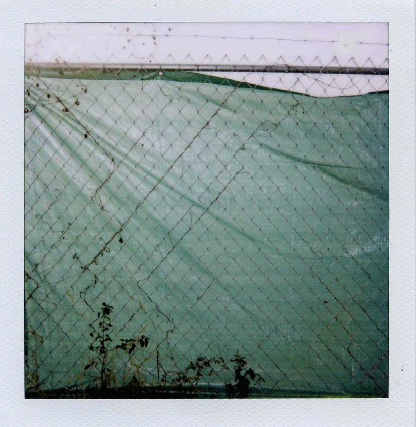green_tarp.png
