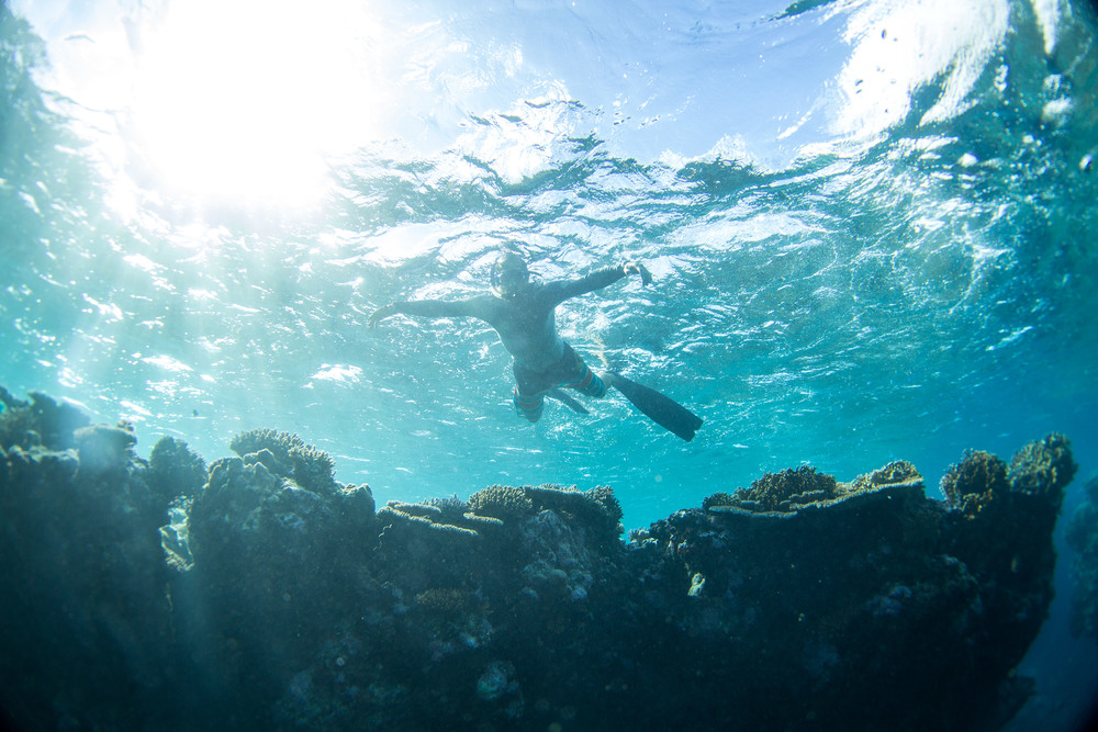 eric-reef-.jpg