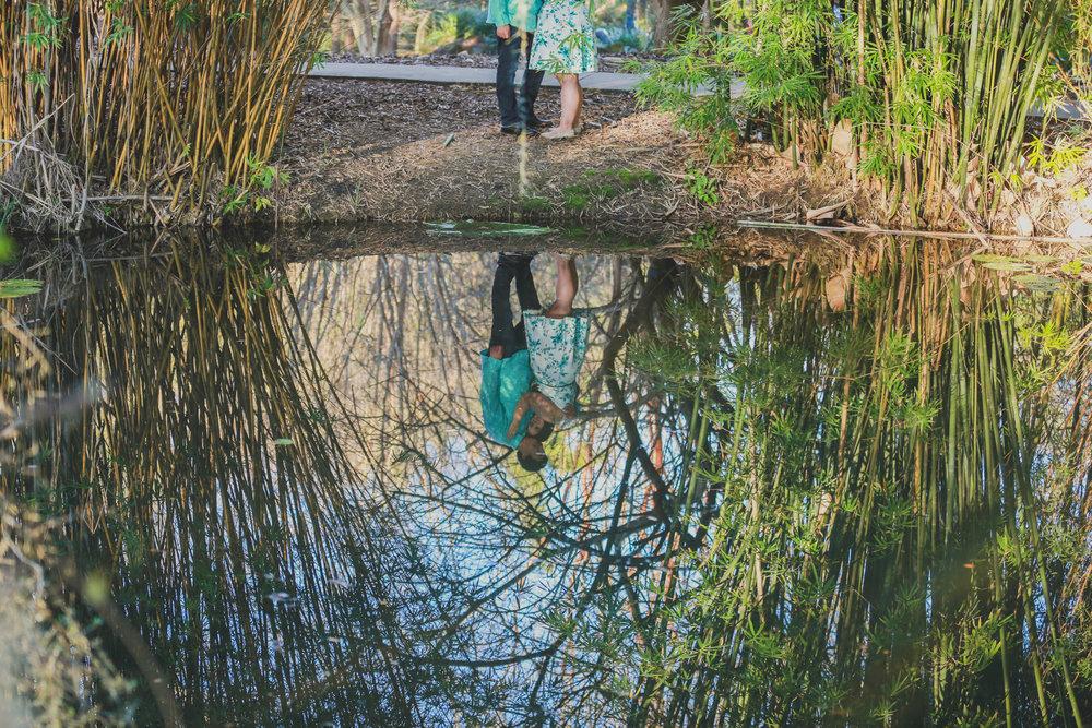 Gainesville Engagement Photography | Kanapaha Botanical Gardens