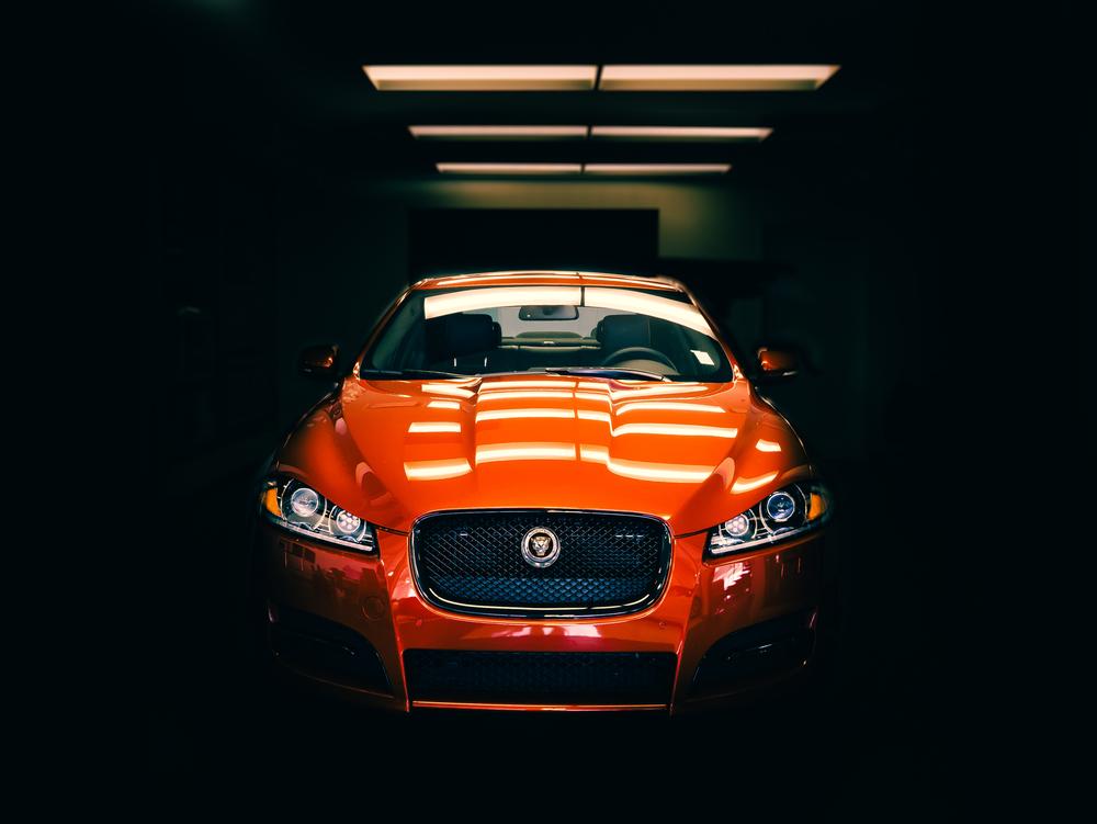 Jaguar 2015 - Gustav nel