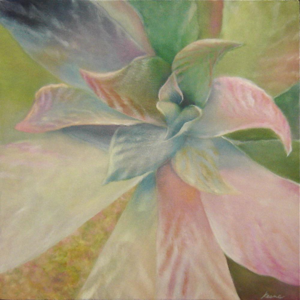 Pastel Succulent