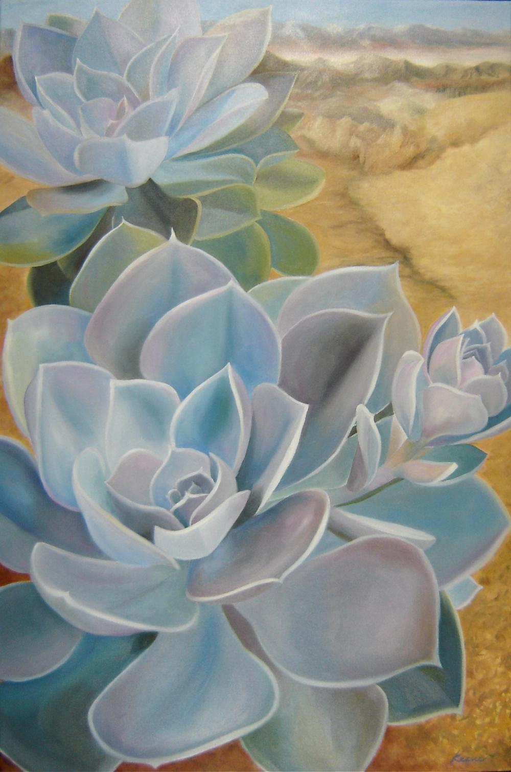 Agave Desert