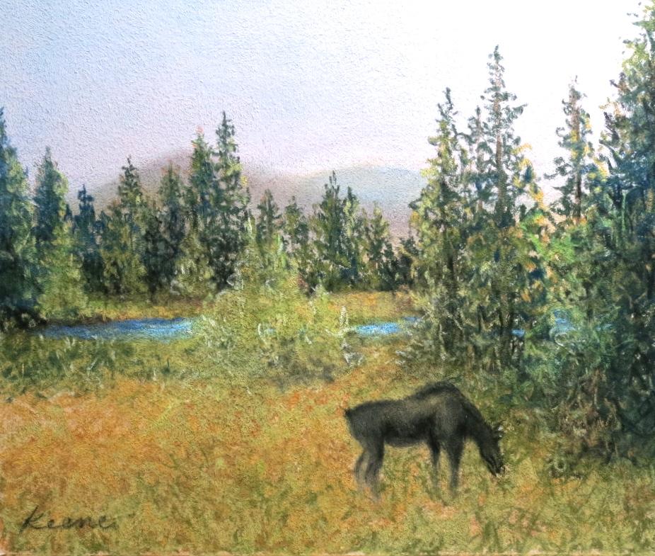 Colorado Moose Calf