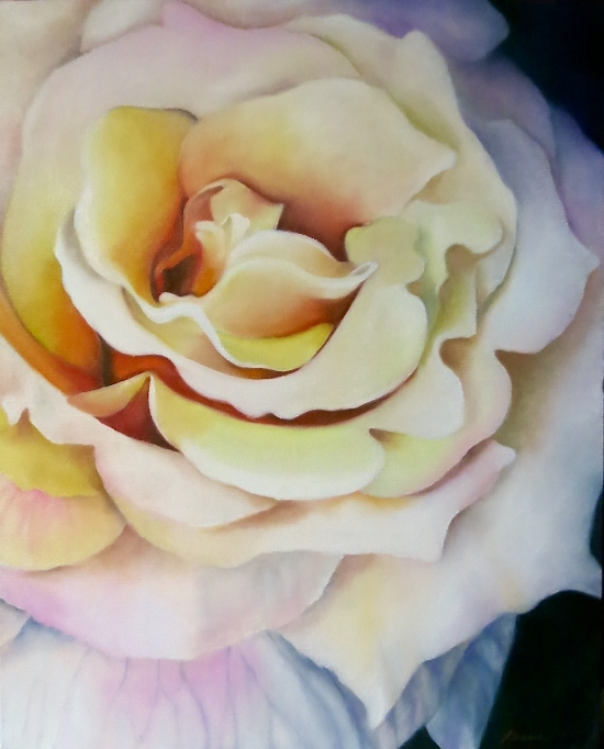 """First Rose of Summer""  20"" x16""  Oil on wrapped canvas"