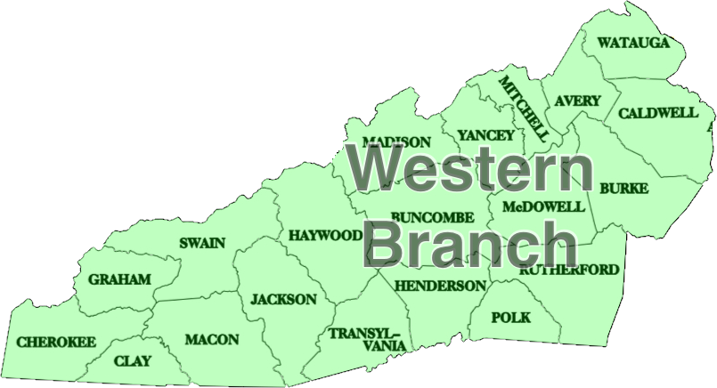 NC County Map Shaded - Western.png