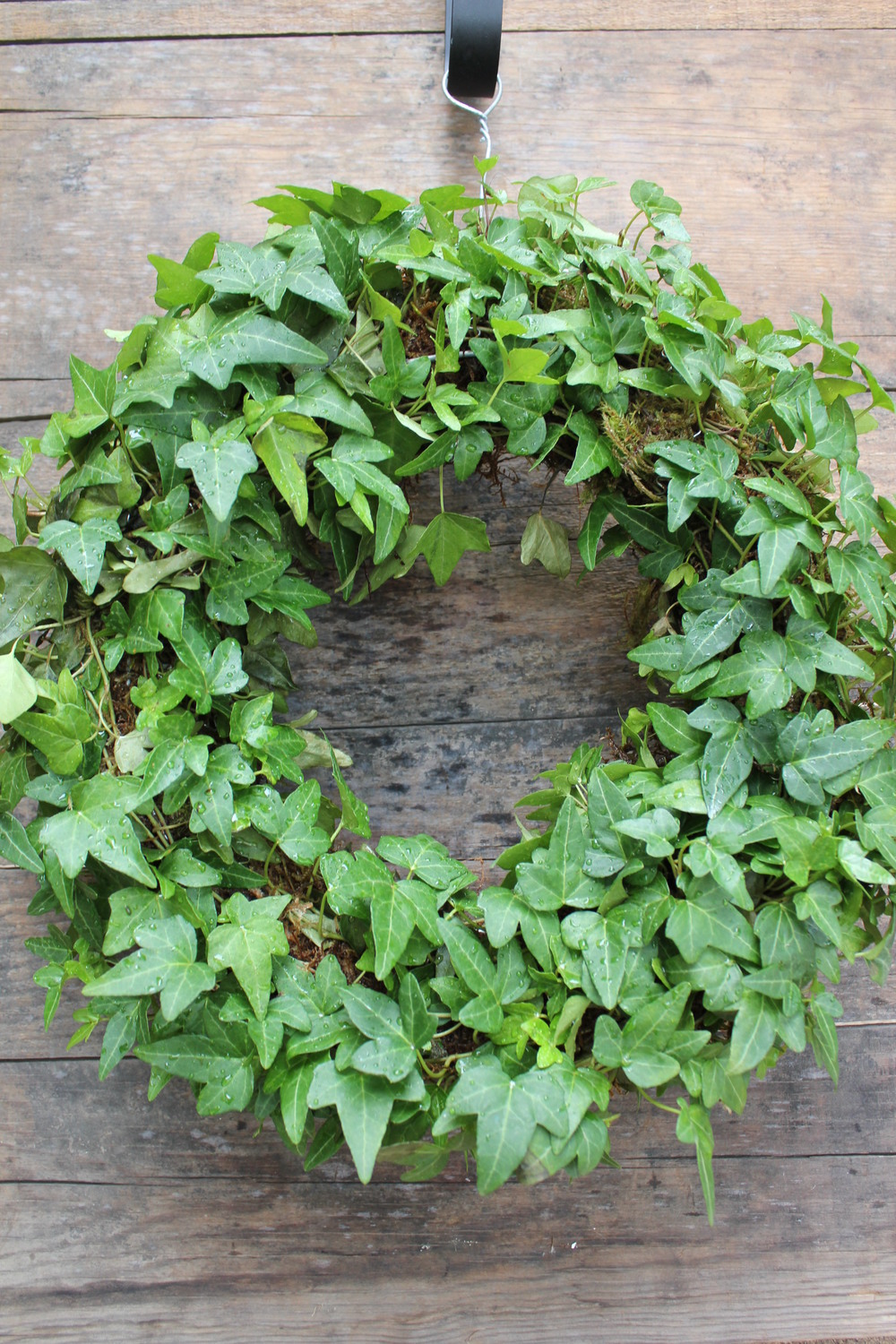 Living wreaths are also fantastic gifts, that last well beyond the holiday season.