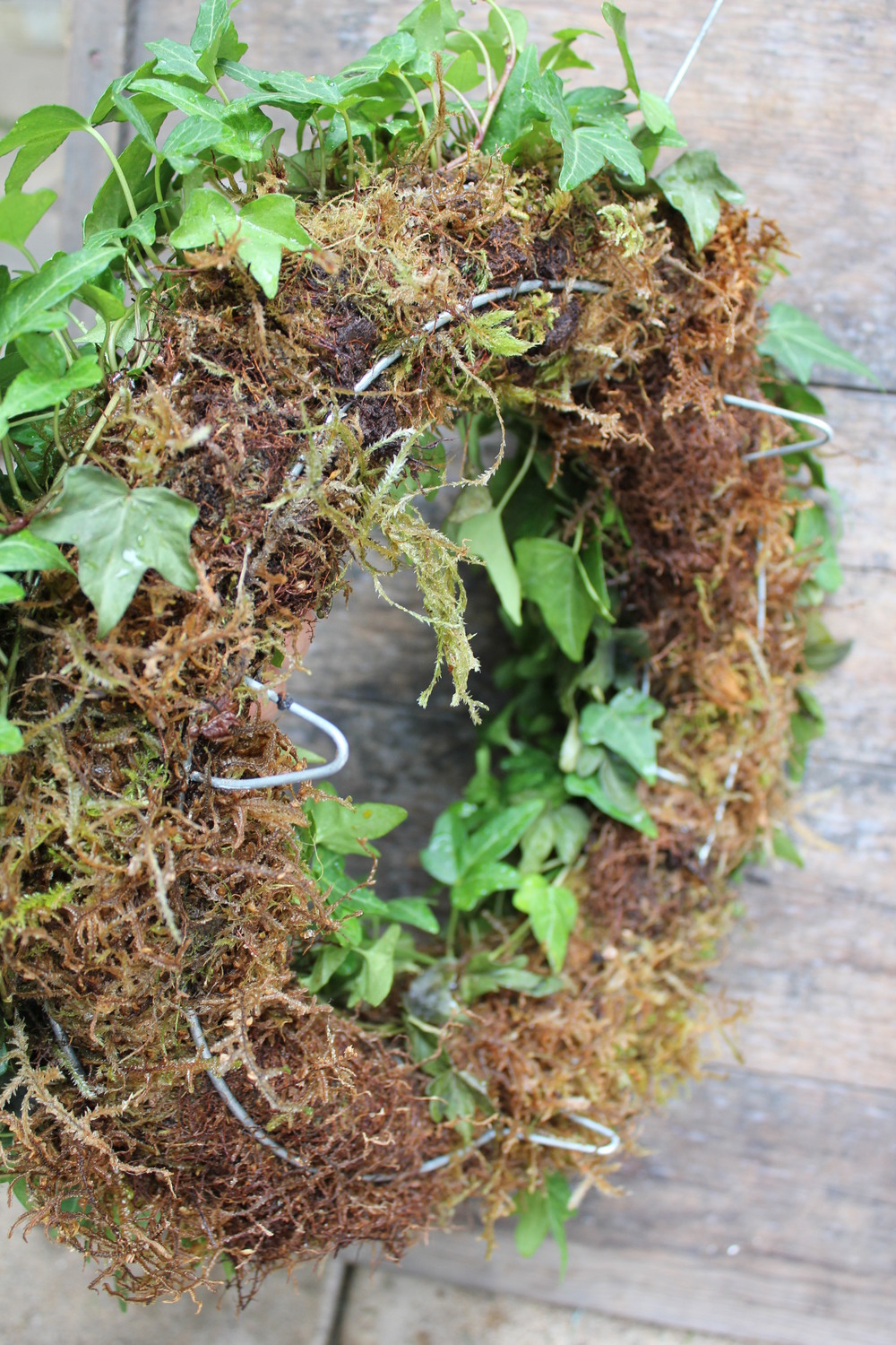 Mounted on a moss frame with legs. soak in a tub of water once an month and you'll have a long last wreath.