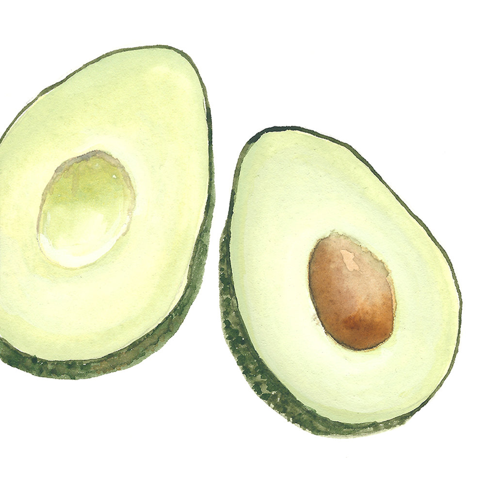 LYC_Illustration_0407_Avocado.jpg