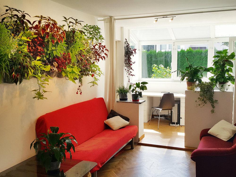 florideja-vertikalni-vrt.jpg