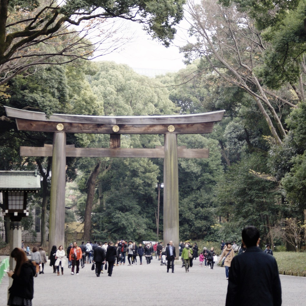 I don't have adequate words to explain exactly how massive the torii gates are.