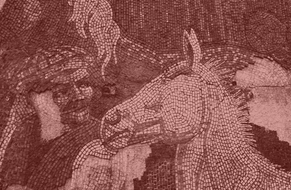 EquusMonos.png