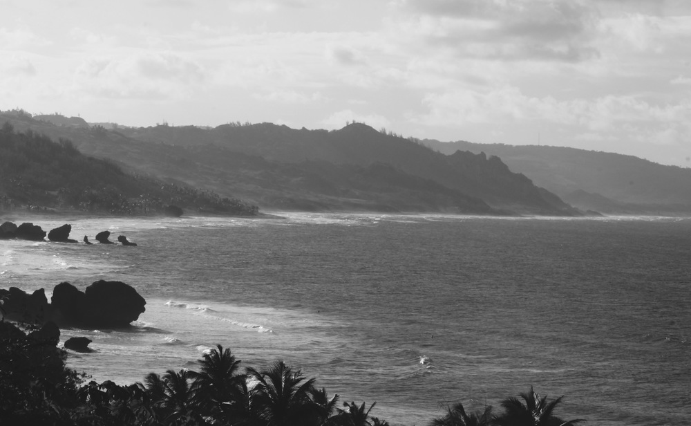 The stunning coast line at Bathsheba