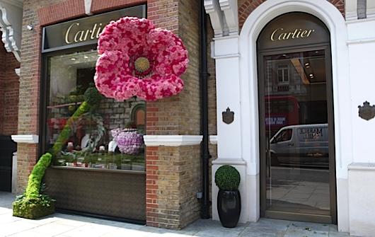 Sloane in Bloom Cartier 1 main