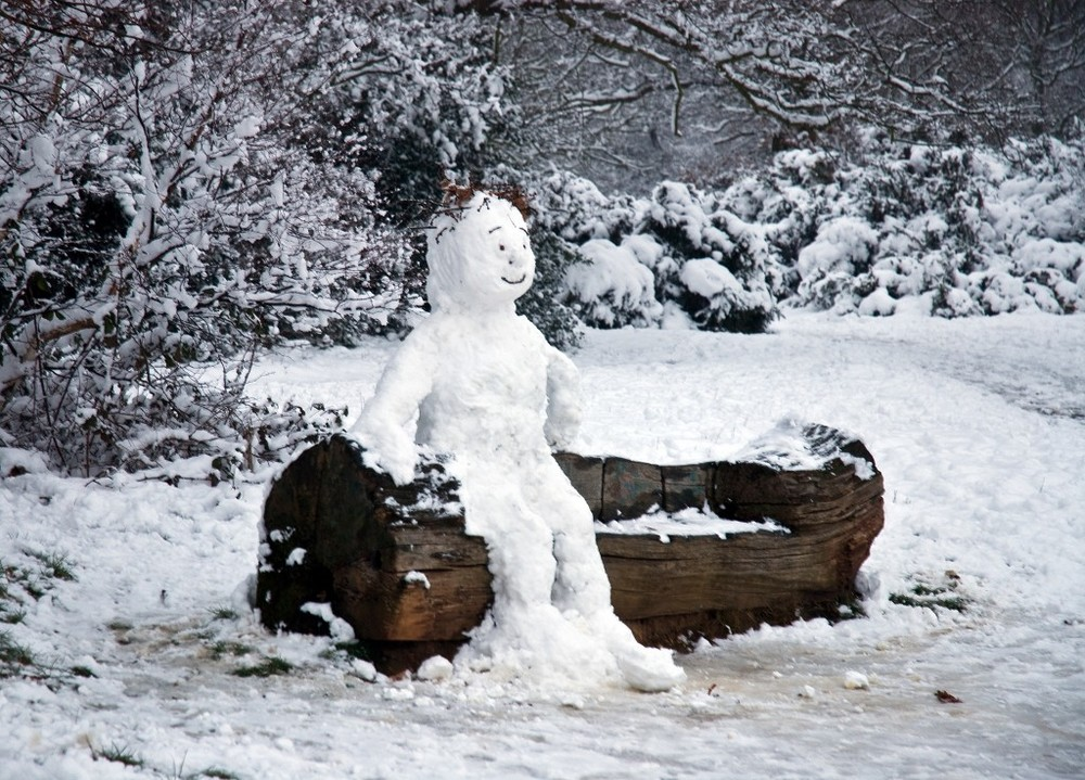 Winning picture: December - Snow Man