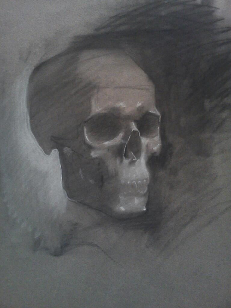 Yorick, 2013, charcoal on paper, 12 x 9 inches