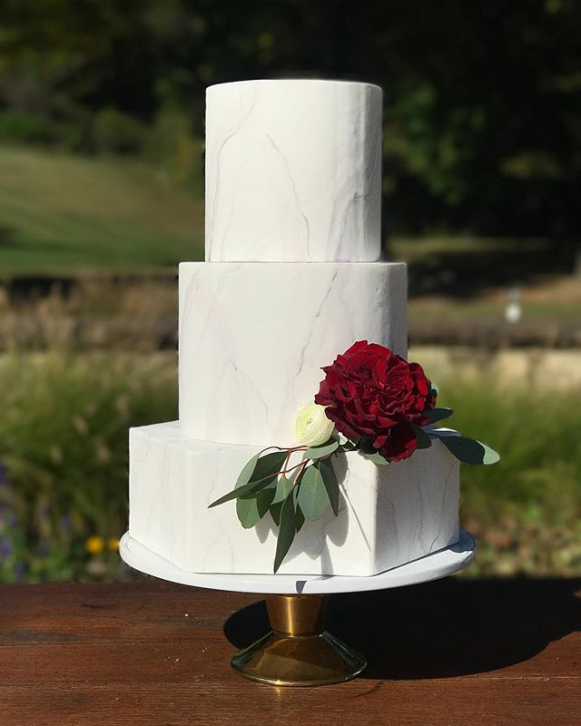 Simple yet stunning. The perfect cake for an elegant outdoor autumnal wedding. . . . . #customcakes #blusharrowcakes #autumnal #wedding #ohiobride #handpaintedcakes #cakerentals #marble
