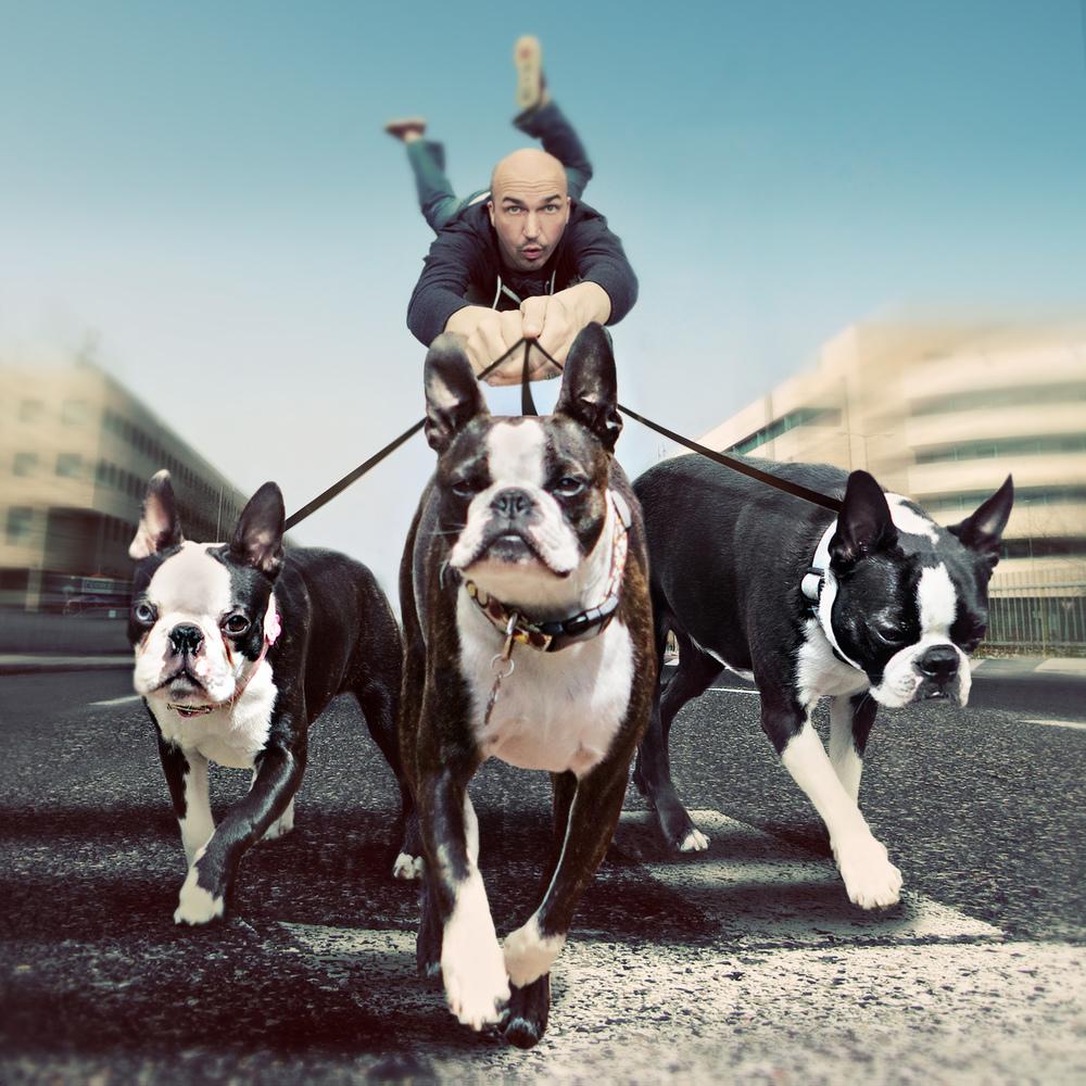Walkin' The Dogs
