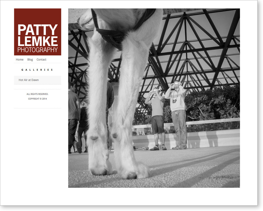 Site Design for Photographer, Patty Lemke